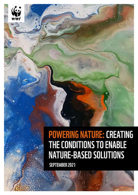 wwf_powering_nature_report-cover