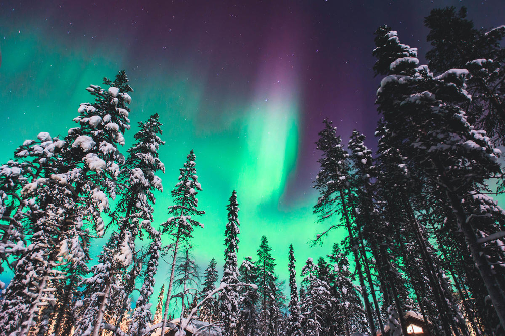 Beautiful picture of massive multicolored green vibrant Aurora Borealis, Aurora Polaris, also know as Northern Lights in the night sky over winte© Shutterstock  Tsuguliev  WWF Small_WW271406 (1)